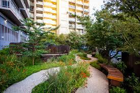 southgate project ian barker gardens bowerbird