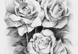 pencil sketch of a rose 25 best ideas about rose drawings on