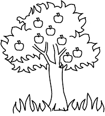 White Oak Tree Drawing Clipart Tree Drawing