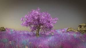 pink tree by feindblut on deviantart
