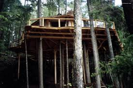 treehouse camping british columbia hidden treehouse resort canada
