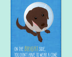 get well card funny etsy
