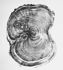 tree rings art images Tree ring pine tree print this simple wood print was printed by jpg