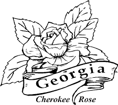 rose coloring pages printable coloring home