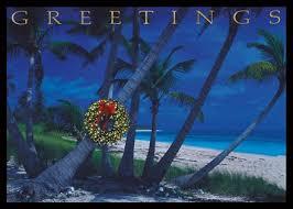 28 best coastal island beach christmas cards and tropical holiday