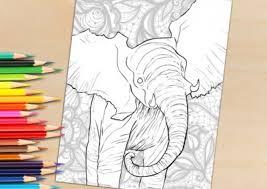 shop selah works coloring books