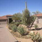 Desert Backyard Landscaping Ideas Desert Backyard Landscaping Ideas Thediapercake Home Trend