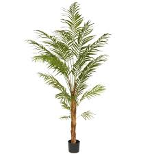 national tree company 7 ft deluxe areca potted palm tree ras