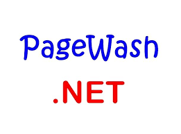 excellent 2 word aged domain pagewash self help finance loans