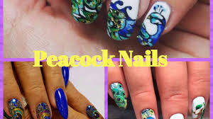 peacock nails peacock feathers nail art youtube