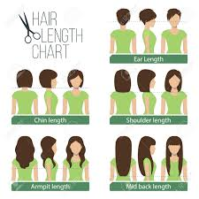 set of different hair length for haircuts and hairstyles short