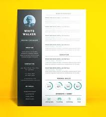 creative resume template free download doc cv template free download south africa creative resume templates