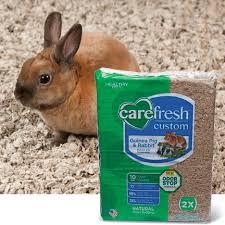 Kaytee Bedding Bedding Stunning Rabbit Bedding Kaytee Clean Cozy Small Pet