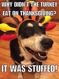 Thanksgiving Dirty Jokes Bad Jokes Thanksgiving Edition U2013 Travels With Choppy