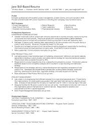 Resume Samples It Professionals by Skill Based Resume Examples Professional Skills Sample Resume