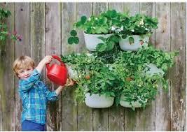 Watering Vertical Gardens - living wall planter 2grey recycled plastic self watering vertical