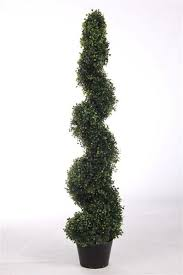 five 4 foot 2 inch artificial boxwood spiral topiary trees potted