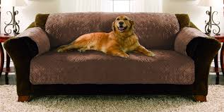 Dog Chair Covers Sofas Center 31 Unusual Pet Sofa Cover Image Concept Pet Sofa