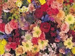 florist huntsville al about albert s flowers huntsville al florist