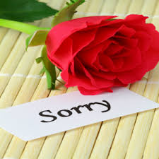 app sorry greeting cards free apk for windows phone android