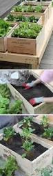 20 genius diy garden ideas on a budget coco29