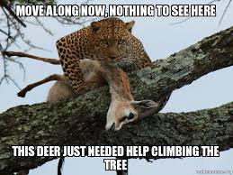Tree Meme - move along now nothing to see here this deer just needed help