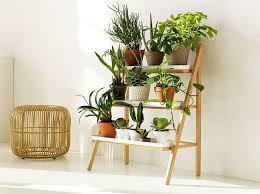 Indoor Gardening Ideas Valuable Things You Need To About Indoor Gardening Garden