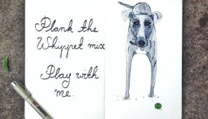 sketch of the day no 1134 in my moleskine art journal whippet