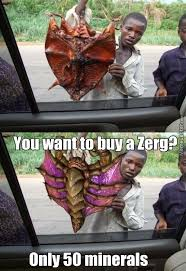 Zerg Rush Meme - i say we take off and nuclear launch the entire site from orbit by