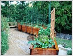 vegetable planter boxes home design ideas