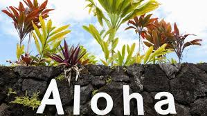 how many letters are in the hawaiian alphabet reference com