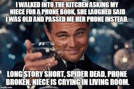Niece Meme - i walked into the kitchen asking my niece for a phone book