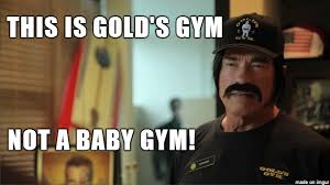 Arnold Gym Memes - this is gold s gym meme on imgur