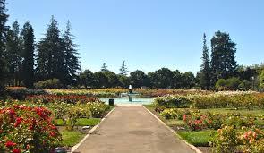 Flower San Jose - cheapest and priciest san jose neighborhoods