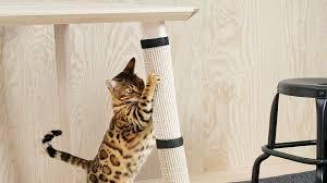 Modern Cat Tree 100 Minimalist Cat Tree Cat Flats Designing Human