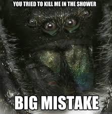 Spider Meme Misunderstood Spider Meme - misunderstood spider meme shower