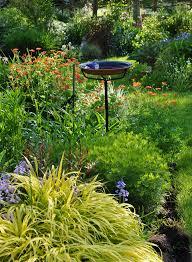using perennials in your spring garden hometalk