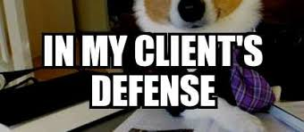 Dog Lawyer Meme - lawyer dog memes meme explorer