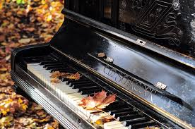 pianos cuisine piano cuisine occasion en stock with piano cuisine occasion the