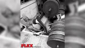 Ronnie Coleman Bench by Even Stronger Than They Look Ronnie Coleman Flex Online