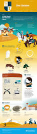 don quixote infographic course hero my humanities nerdiness