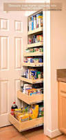 kitchen closet pantry ideas u2013 aminitasatori com