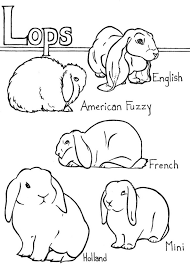 rabbits coloring pages 268 best rabbits crafts images on pinterest easter crafts