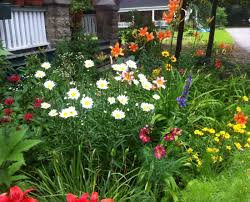 pretty flower garden ideas flowers 2 beautiful flower bed plants picture most perennial