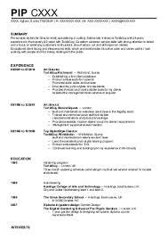 Sample CV Page   sasek cf