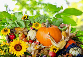 thanksgiving wallpaper backgrounds festival collections