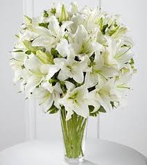 white lilies white white flower white flowers