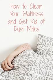 how to clean your mattress and get rid of dust mites u2022 heartful habits