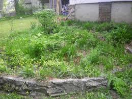 restoration of a dilapidated raised garden bed extreme how to