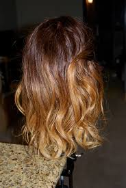 ambre blends hair ambre blends hair dark brown hairs of blended hair color styles